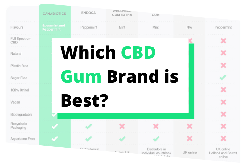 CBD Gum Review: Which Brand is Best?